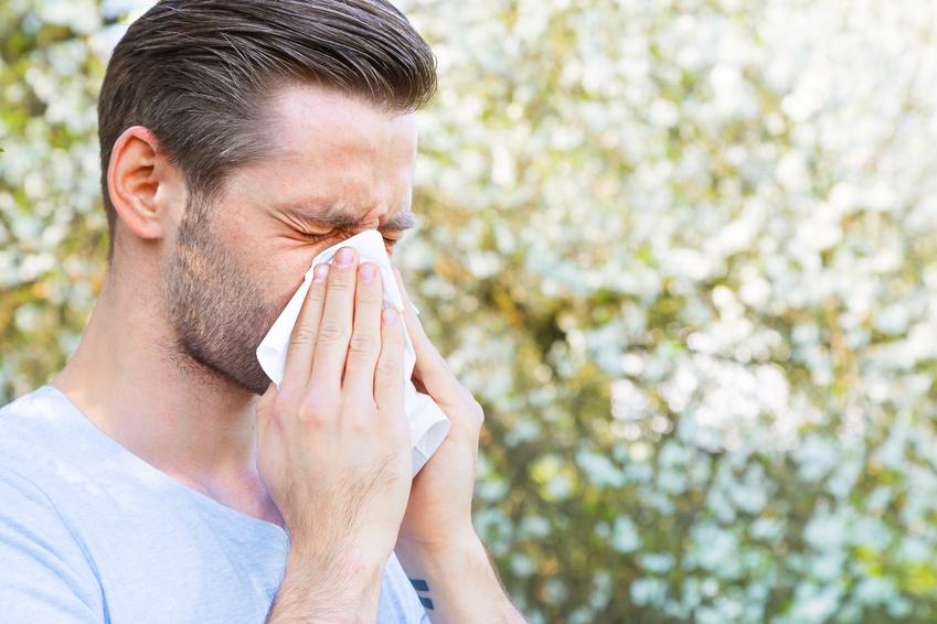 wohnraumlüftung mit Pollenfilter